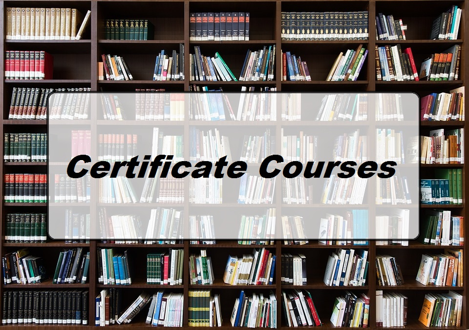 Best Certificate Courses in India | 3, 6 & 12 Months Long