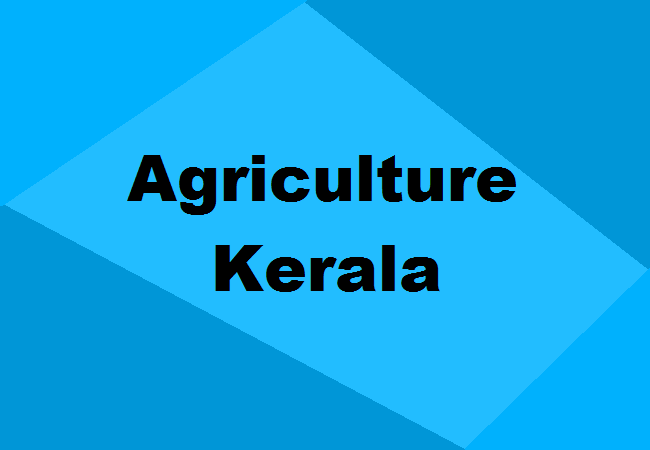 Top Agriculture Colleges In Kerala 2020 Apply Now