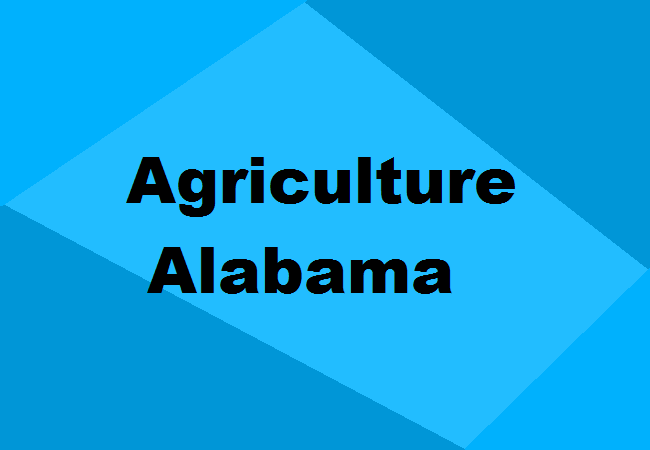 Agriculture Colleges Alabama